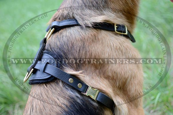 Durable Back Plate of German Shepherd Harness Leather Dog Gear