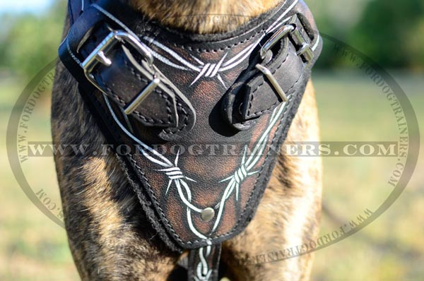 Softly Padded Leather Canine Harness for Large Breed Dogs