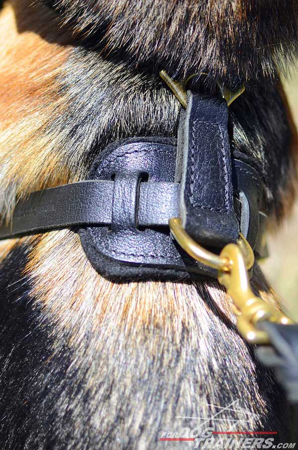 Leather Padded Back Plate of Training German Shepherd Harness Adjuatable