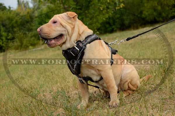 Leather Canine Harness for Attack Training
