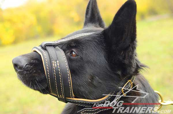 Anti-barking Leather Dog Muzzle-Adjustable