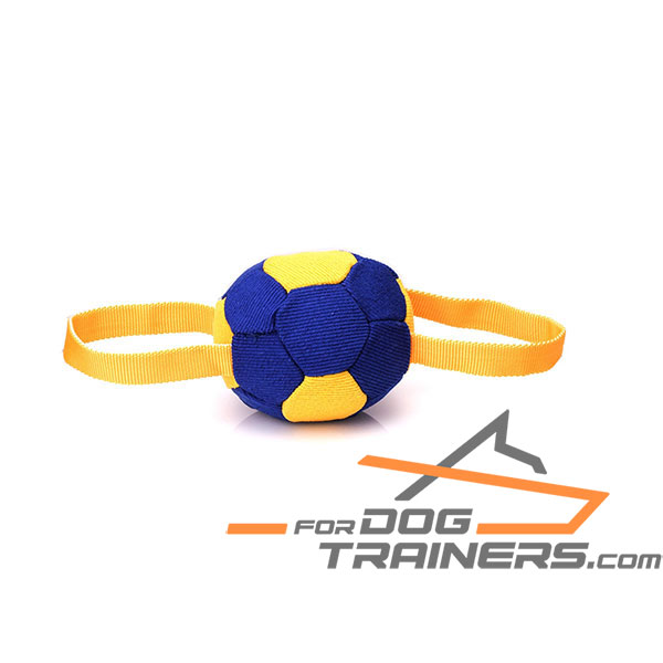 Durable Dog Bite Tug with Two Handles