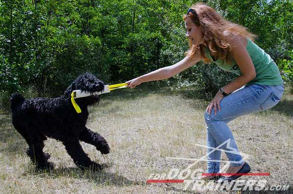 Fire Hose Bite Tug with Two Handles for Black Russian Terrier