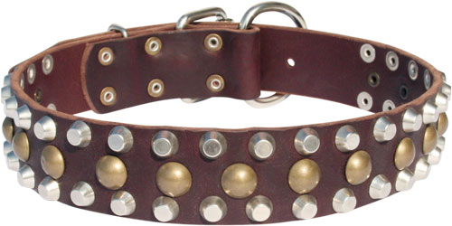 Leather Dog Collar Adorned with Pyramids and Studs