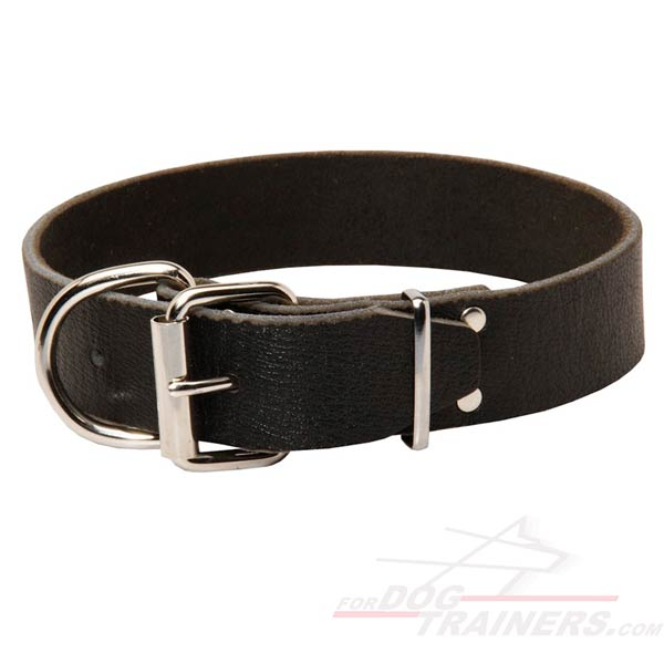 1.5 inch  wide Leather Dog Collar