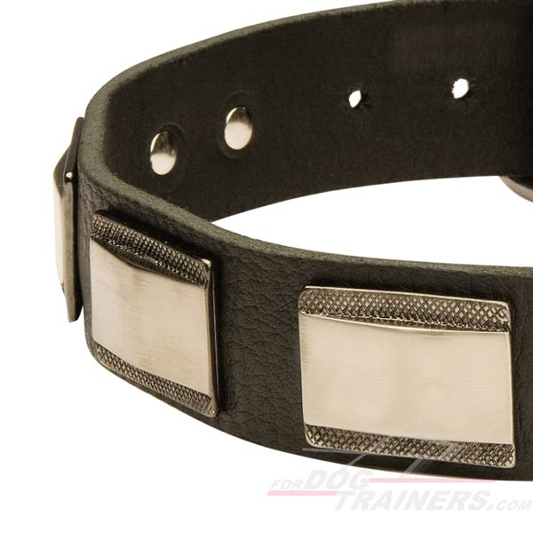 Try Quality Dog Collar