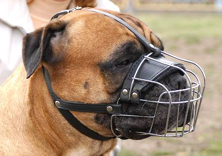 Metal Basket Dog Muzzle for Easy Breathing and Drinking Water