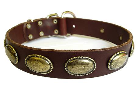 Leather Canine Collar Decorated With Vintage Oval Plates
