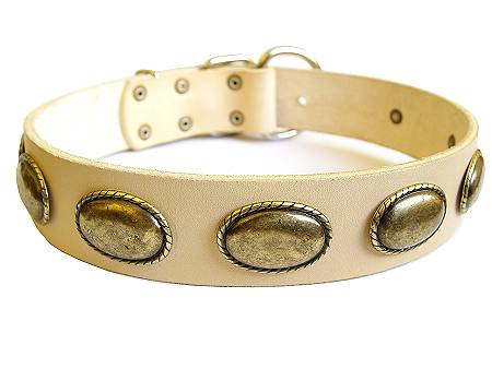 White Leather Dog Leather Collar with Elegant Decor