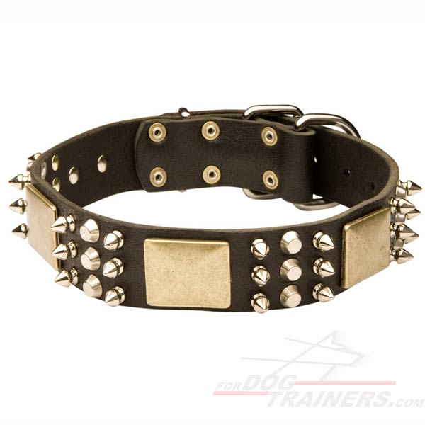 Leather Pitbull Collar with Decorations