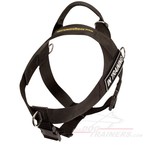 Lightweight Dog Harness with Front Leash Attachment Ring