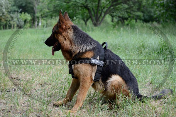 German Shepherd dog harness - h17