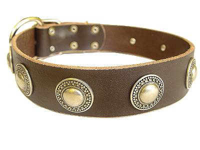 Deluxe Leather Dog Collar with Medieval Style Brooches