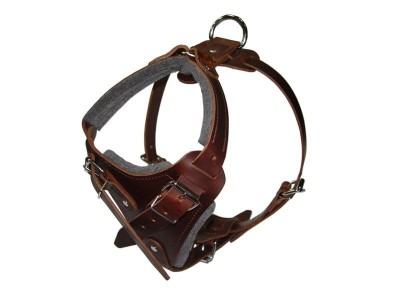 Padded Leather Dog Harness for Attack Training and Walking Large/Medium Breed Dogs