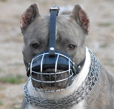 American Pitbull Basket Dog Muzzles with Padded Nose Zone