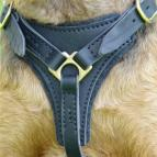 Comfortable Dog Training Harness for Pulling, Tracking and Walking