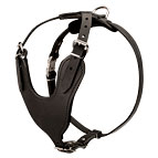 Heavy Duty Dog Harness for Attack/Protection Training